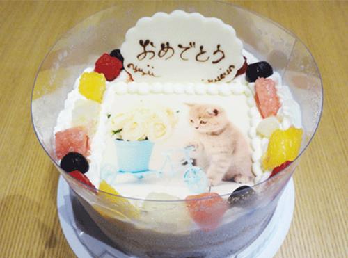 届いてすぐケーキを見てみました